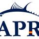 certificación AENOR de Pesca Responsable de Atún