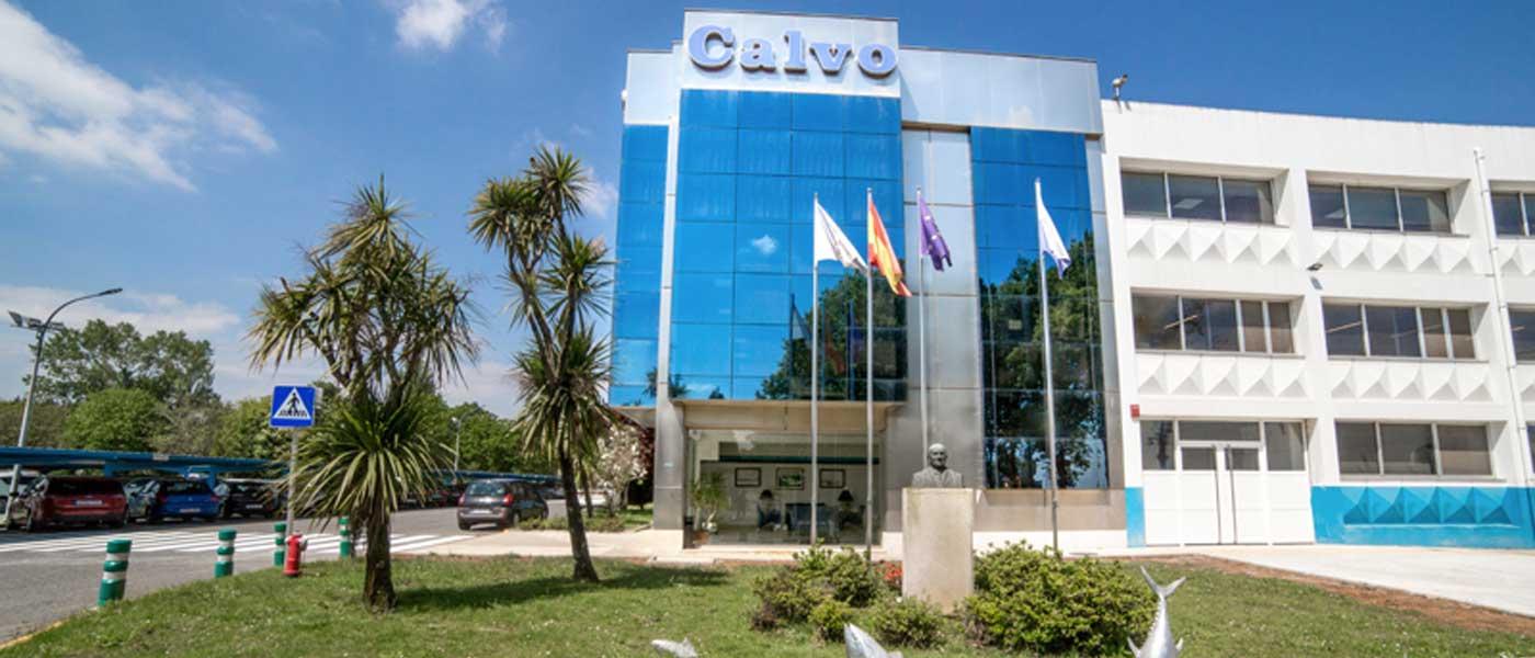 Grupo Calvo Resultados 2019